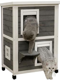 kattenhuis_flat_family